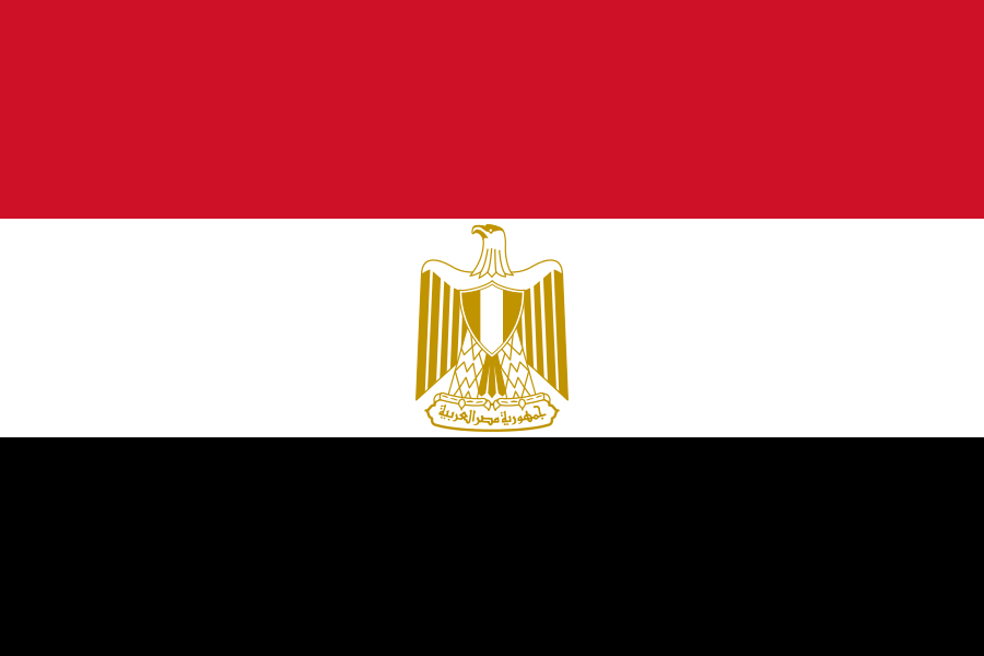 Bank Transfers To Egypt